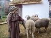 un pastorello