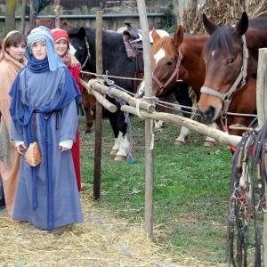 10 cavalli e bambini
